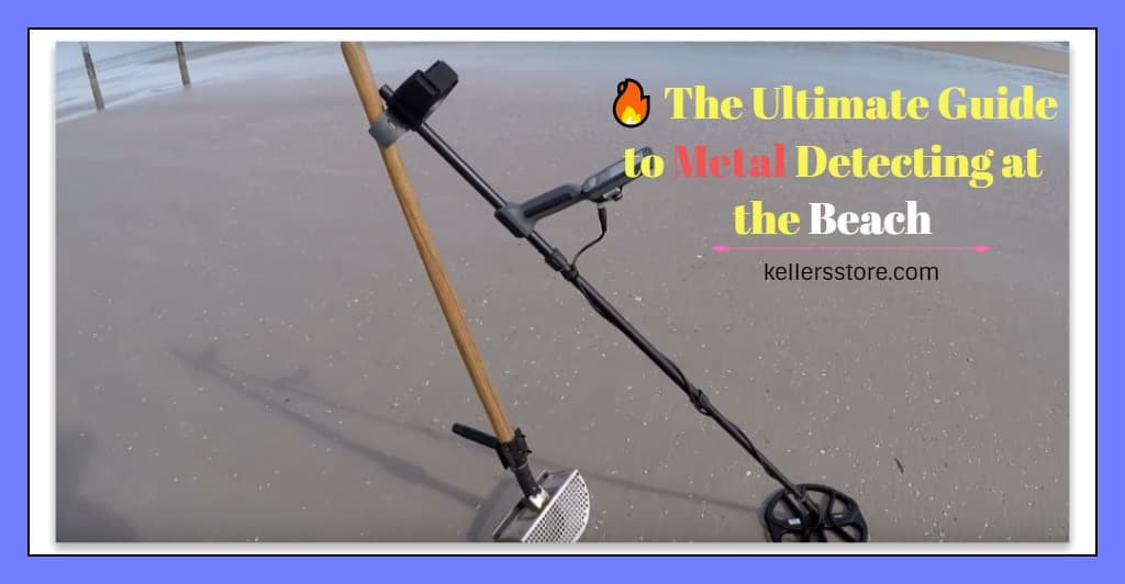Metal Detecting at the Beach